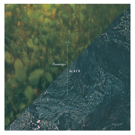 flaamingos the kvb split ep